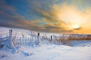 photos en hiver